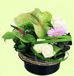 Fleuriste Mariage A Fleur D Eau Noisiel 77 Livraison De Fleurs 75
